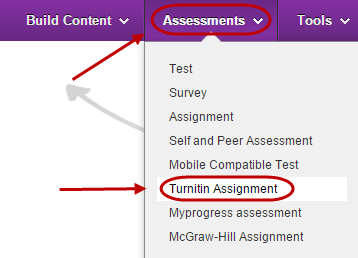 click on turnitin assignment
