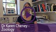 Dr Karen Cheney - Video assignments