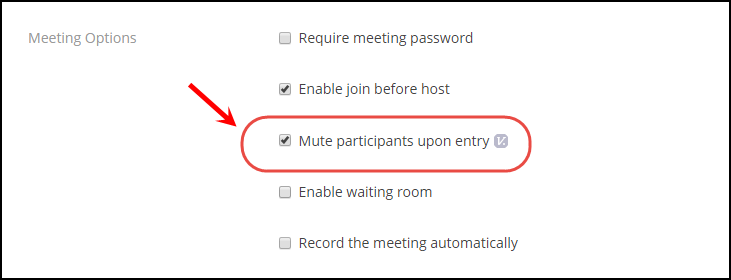 Mute participants on entry