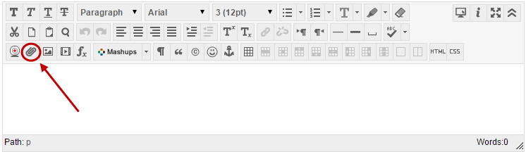 Text editor with File Link icon circled