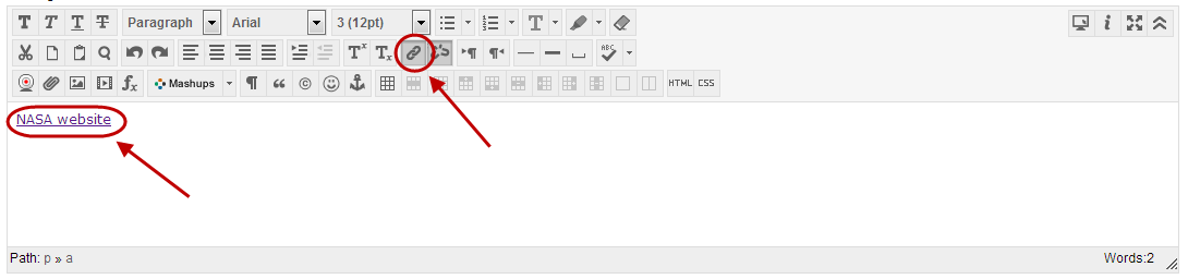 Text editor with web link icon circled