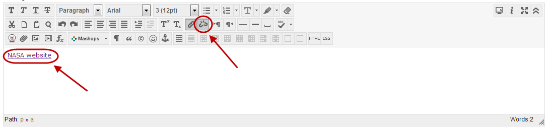 Text editor with remove web link icon circled