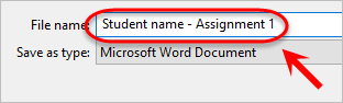 the file name is highlighted