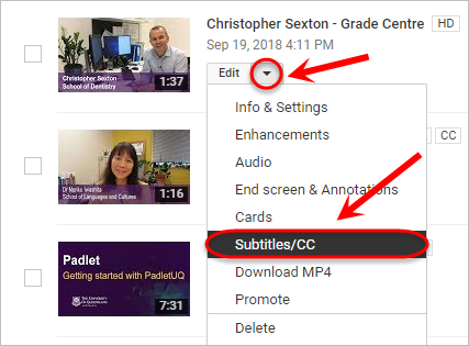 the arrow and subtitles button are highlighted