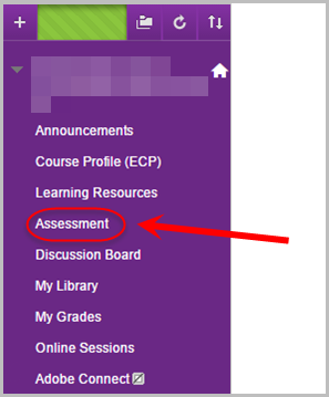 assessment option circled in blackboard course site menu