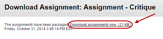 click on download assignment now