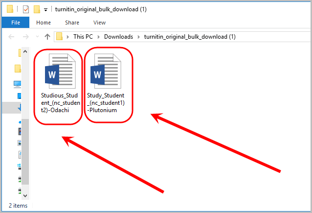 Extracted folder showing example assignments circled