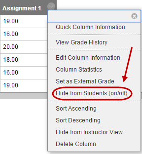 click on hide from students on/off link