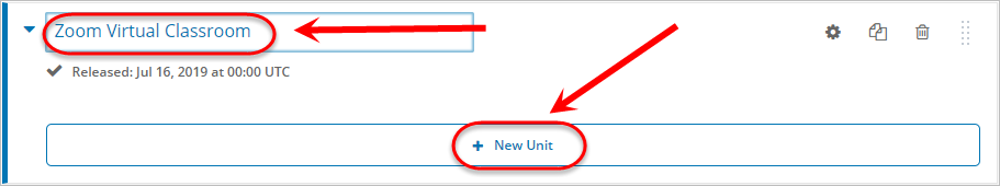 Subsection name textbox and + New Unit button circled
