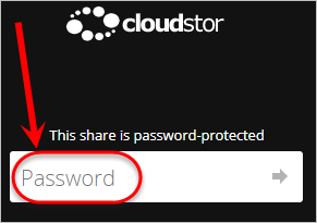 Password field circled