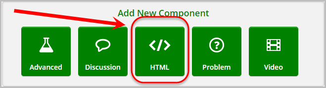 html button selected