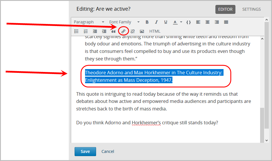 text highlighted and selected, insert/edit link icon selected